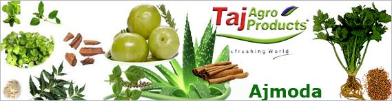 Ajmoda, Ajmoda exporters in India, Indian Ajmoda, Taj Agro ...