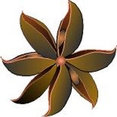Star Anise Single