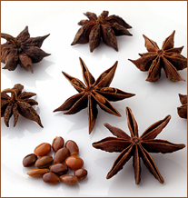 Star-anise-spices
