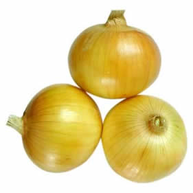 Onion for yellow