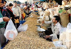 ground nut markets