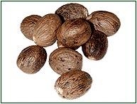 Jaiphal (Nutmeg), Nutmeg exporters in India, Indian Nutmeg