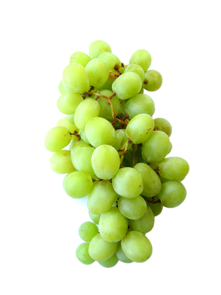 white grapes fruits  white grapes good for baking  types