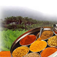 Indian spices export,indian companies,manufacturer,supply,trade
